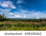 clouds cast shadows over a pine ... | Shutterstock . vector #698100262