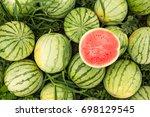 ripe watermelons on the field ... | Shutterstock . vector #698129545
