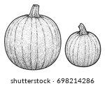 pumpkin illustration  drawing ... | Shutterstock .eps vector #698214286