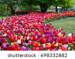 floral background with colorful ...