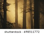 calm misty morning in autumn... | Shutterstock . vector #698511772