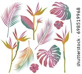 vector tropical palm leaves ... | Shutterstock .eps vector #698519968