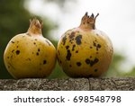 whole yellow pomegranate on... | Shutterstock . vector #698548798