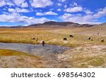 wild yaks at the lake in the... | Shutterstock . vector #698564302