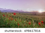 field with poppies and... | Shutterstock . vector #698617816