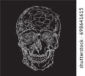 Skull Drawing  Illustration ...