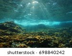 underwater sunlight through the ... | Shutterstock . vector #698840242