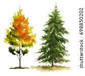 autumn trees. fall season. | Shutterstock . vector #698850202