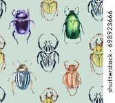 beetle background. seamless... | Shutterstock . vector #698923666