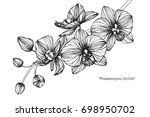 hand drawn and sketch orchids... | Shutterstock .eps vector #698950702