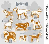 dogs breeds of the world vector ... | Shutterstock .eps vector #698957938