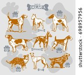 dogs breeds of the world vector ... | Shutterstock .eps vector #698957956