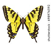 vector drawing yellow butterfly | Shutterstock .eps vector #698976592