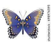 vector drawing blue butterfly | Shutterstock .eps vector #698976595