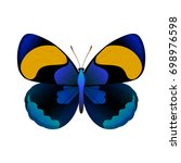 vector drawing blue butterfly | Shutterstock .eps vector #698976598