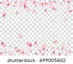 Falling Pink Flower Petal...