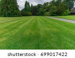 large green lawn and trees in... | Shutterstock . vector #699017422
