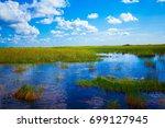 everglades national park....   Shutterstock . vector #699127945