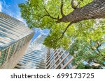 fresh green and building | Shutterstock . vector #699173725