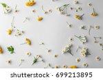 scattered chamomile flowers on... | Shutterstock . vector #699213895