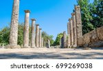 olympia  greece | Shutterstock . vector #699269038