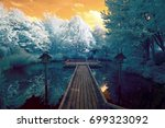 Stock photo infrared photography of a japanese garden based on elements of shinto and zen photo shot with a 699323092