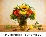 autumnal flowers and berries in ... | Shutterstock . vector #699374512