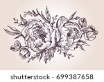 flower set  highly detailed... | Shutterstock .eps vector #699387658