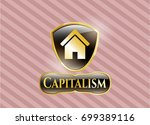 golden badge with home icon... | Shutterstock .eps vector #699389116