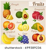 pineapple  avocado  pomegranate ... | Shutterstock . vector #699389236