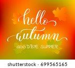 vector lifestyle lettering... | Shutterstock .eps vector #699565165