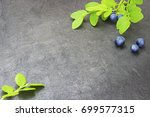 blueberries fresh on a green... | Shutterstock . vector #699577315