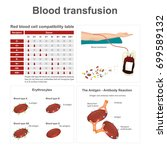 blood transfusion. there are... | Shutterstock .eps vector #699589132