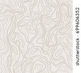 topographic map lines  earth... | Shutterstock .eps vector #699606352