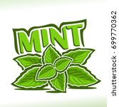 vector logo for mint herb ... | Shutterstock .eps vector #699770362