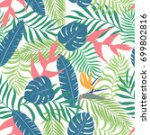 tropical background with palm... | Shutterstock .eps vector #699802816