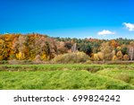 panoramic landscape of autumn... | Shutterstock . vector #699824242