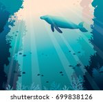 silhouette of big whale and... | Shutterstock .eps vector #699838126