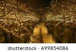 beautiful golden illumination... | Shutterstock . vector #699854086