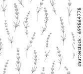 seamless pattern of lavender... | Shutterstock .eps vector #699864778