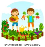 two kids picking vegetables in... | Shutterstock .eps vector #699933592