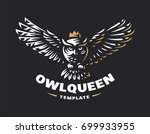 owl logo   vector illustration. ... | Shutterstock .eps vector #699933955