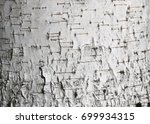 birch bark texture for natural... | Shutterstock . vector #699934315