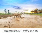 traditional indian framer using ... | Shutterstock . vector #699951445