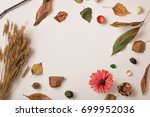 autumn background  set of dry... | Shutterstock . vector #699952036