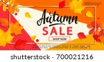 modern banner for autumn sale... | Shutterstock .eps vector #700021216