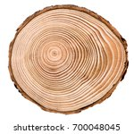 cross section of larch tree... | Shutterstock . vector #700048045