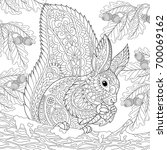 coloring page of squirrel... | Shutterstock .eps vector #700069162