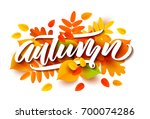autumn banner background with... | Shutterstock .eps vector #700074286