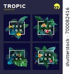 set of bright tropical... | Shutterstock .eps vector #700082416
